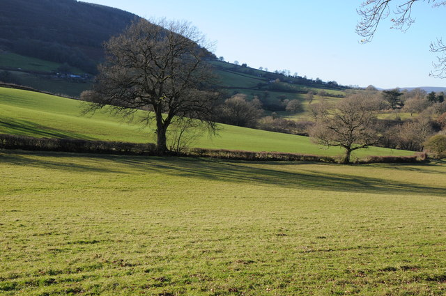 Farmland in the Monnow valley