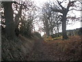SE2908 : Bridleway south of Cawthorne Lane by John Slater