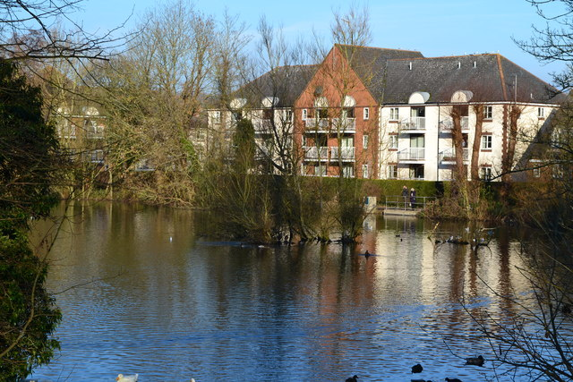 King's Pond, Alton