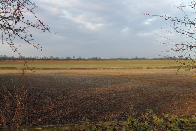 Fields off Horncastle Lane