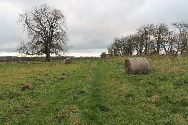 Field near Sotby