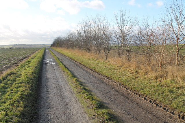 Track to Cawkwell Top Farm