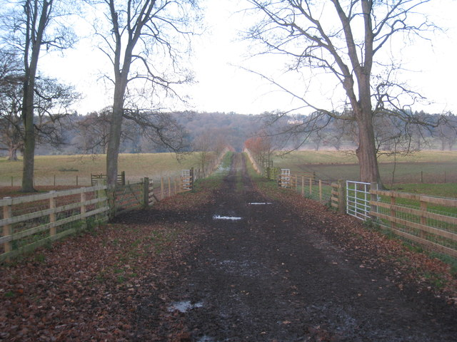 Avenue to Beaufront Castle