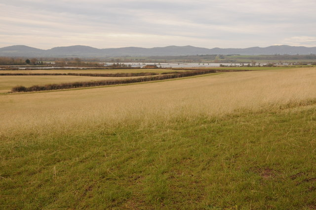 View across Longdon Marsh