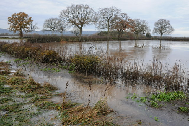 Longdon Marsh in flood