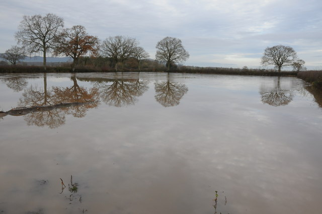 Flooded field on Longdon Marsh
