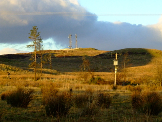 Masts on Scroggy Bank