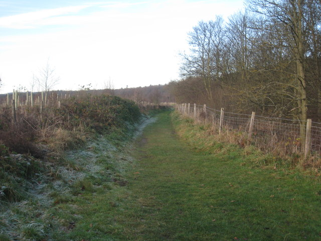 The footpath to Corbidge