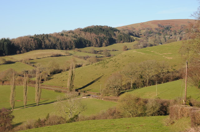 The slopes of Garway Hill