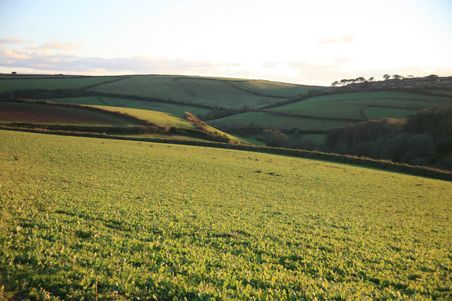 A view across the fields above Millbrook
