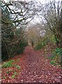 SO8378 : Path near Springfield Park, near Kidderminster by P L Chadwick
