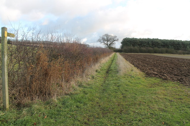 Public Bridleway from Asterby End
