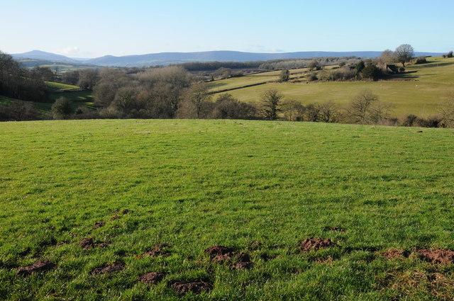 View over Kentchurch