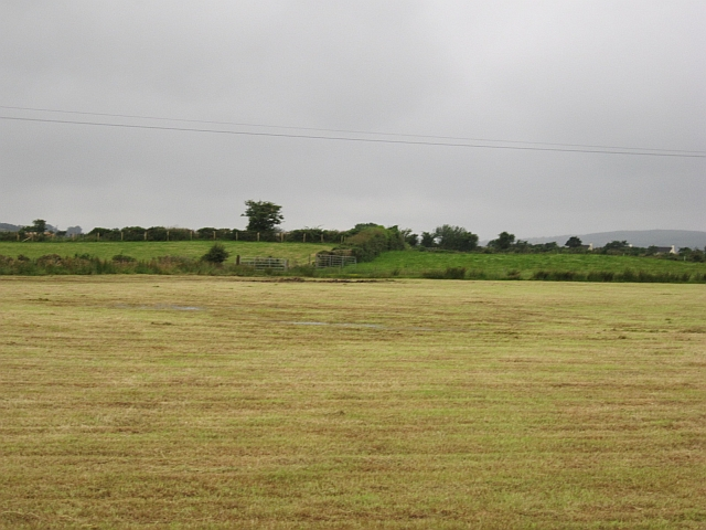 Harvested silage