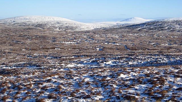 Bogs north of Dog Hillock