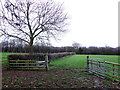 SP3860 : Field Gate near Harbury by Nigel Mykura