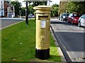SD5817 : Chorley goes Gold for Bradley Wiggins by Douglas Law