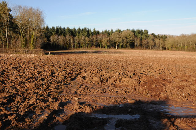 Ploughed field and Mill Wood