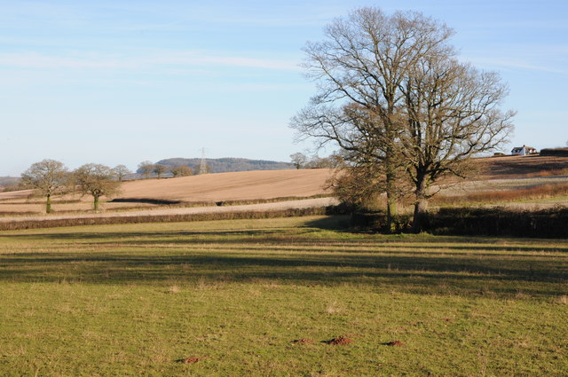 Farmland at Kilpeck