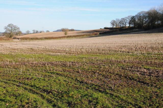 Stubble field near Kilpeck