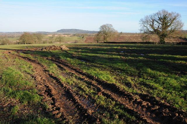 Farmland at New House Farm