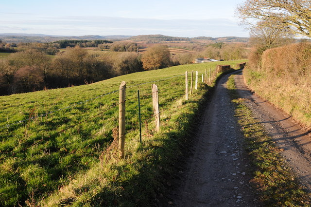 The Herefordshire Trail near Grafton Oak