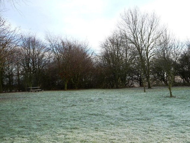 Walkington Wold picnic site in winter [1]