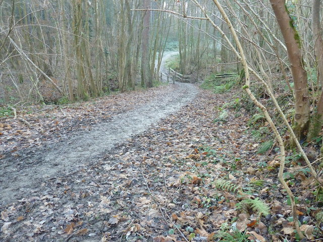 High Weald Landscape Trail crossing Vowels Gill in Minepit Wood