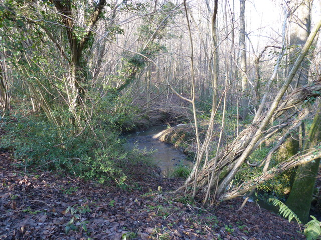 Minor tributary of the River Medway