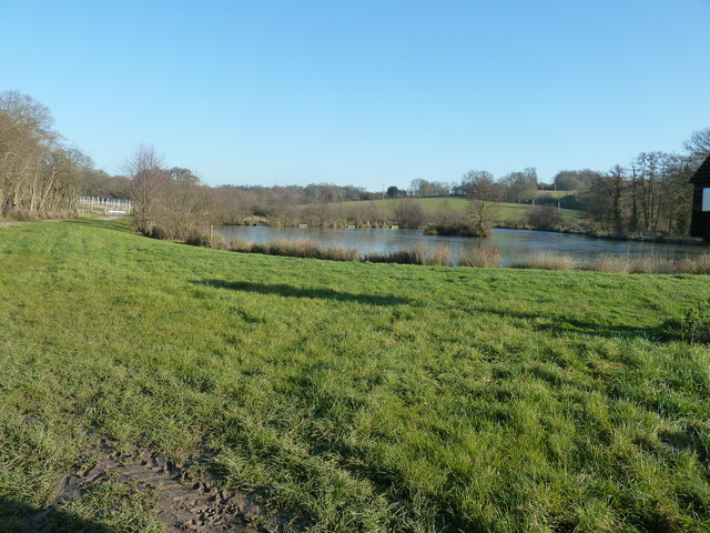 Fishing Lake by Mill Place Farm