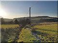 SD7515 : Footpath at Finny Cote by David Dixon