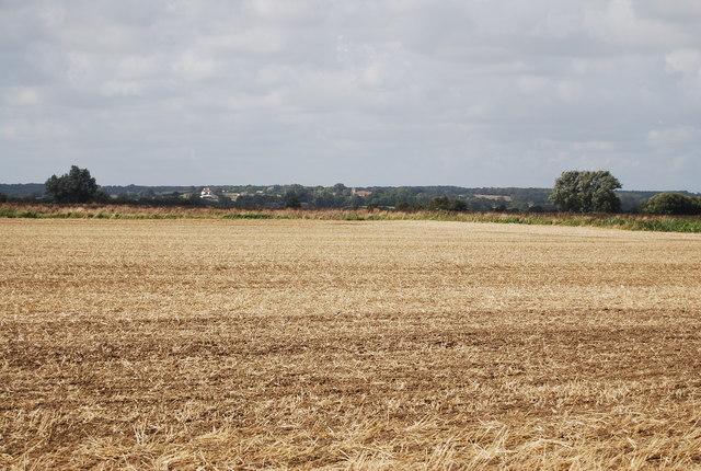 Farmland, Romney Marshes
