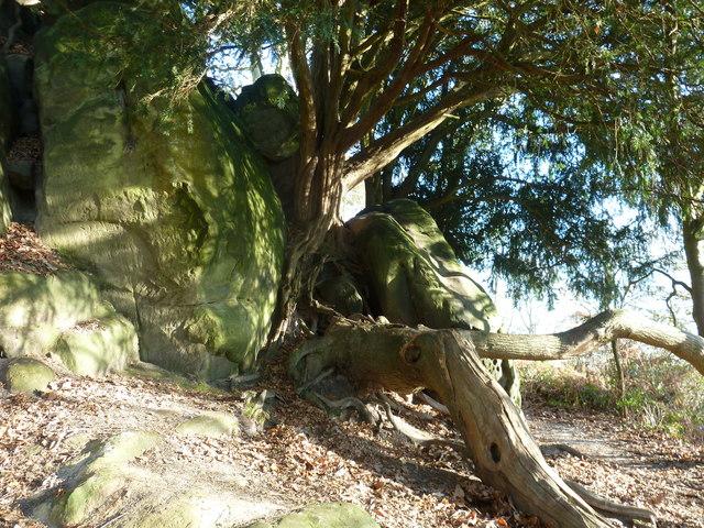 Stone Hill Rocks 2