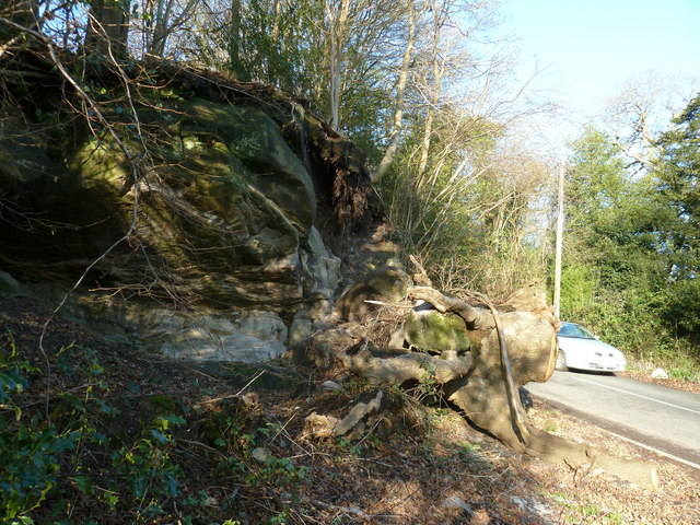 Fallen tree and rocks by West Hoathly Road