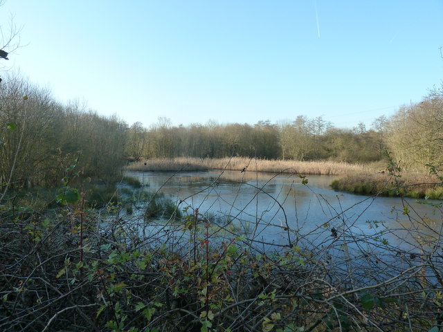 Western end of Weir Wood Reservoir