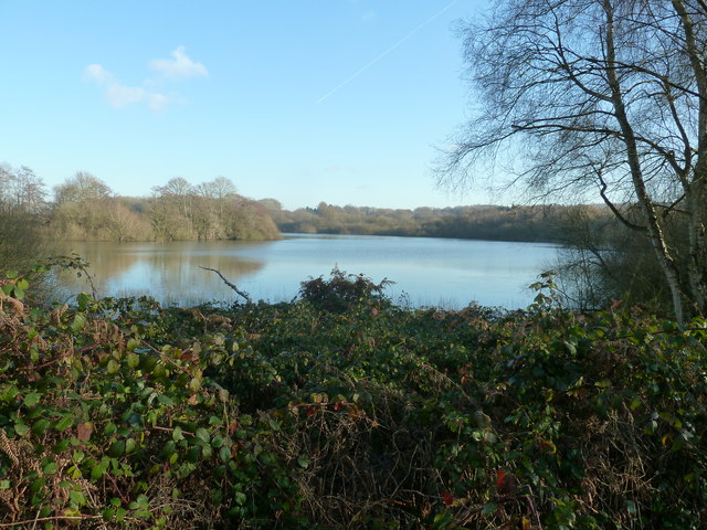 Weir Wood Reservoir and Nature Reserve