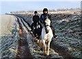 TF1299 : Riding horses on Nettleton Wold : Week 50