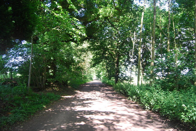 Passing through Mill Copse
