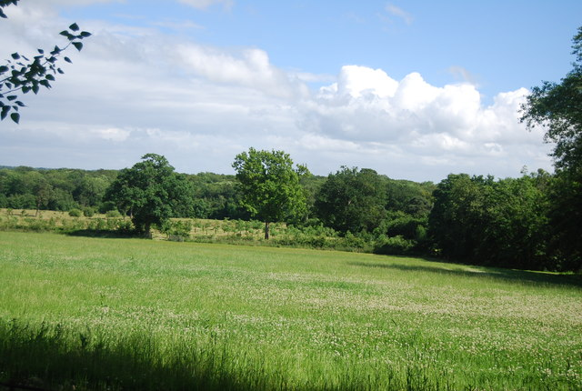 Farmland, Hall Place Farm