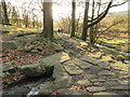 SK2680 : Towards a bridge over Burbage Brook by Peter Barr