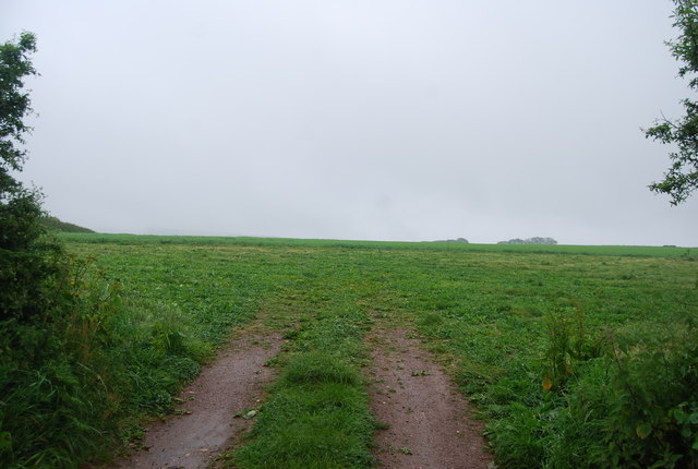 Field at Lower Green Cross