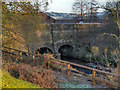 SJ9398 : River Tame, Dukinfield Aqueduct by David Dixon