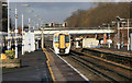 TQ4565 : Orpington Station by roger geach