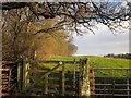 NZ8507 : Gate on Esk Valley Walk by Derek Harper