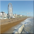 TQ3103 : Brighton beach on New Year's Day by Roger  Kidd