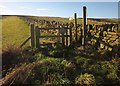 NZ9408 : Stile beside the Cleveland Way by Derek Harper