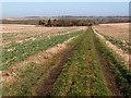 TL0267 : Arable landscape near Upper Dean by Michael Trolove