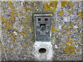 SK9000 : Ordnance Survey Flush Bracket S2093 by Peter Wood
