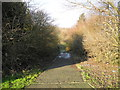 SJ9696 : Footpath to Gylden Close by John Topping