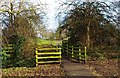 SO9062 : Public footpath in Lido Park near car park off St. Peter's Church Lane, Droitwich by P L Chadwick